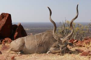kudu mountain