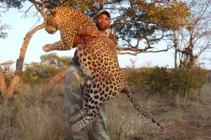 leopard 159 pounds